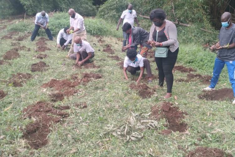 Tree Planting Day 18th May 2021